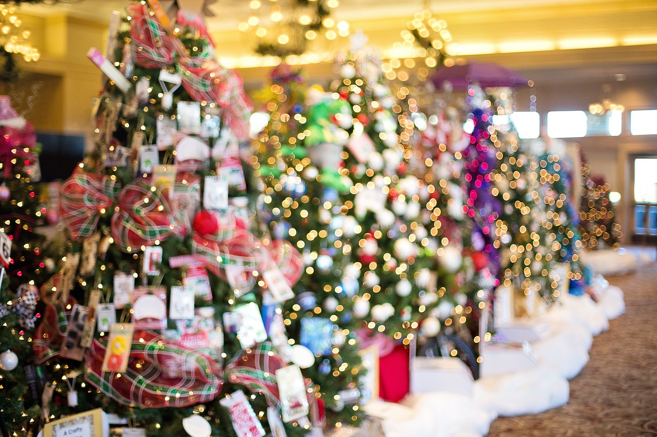 christmas-trees-1823938_1280